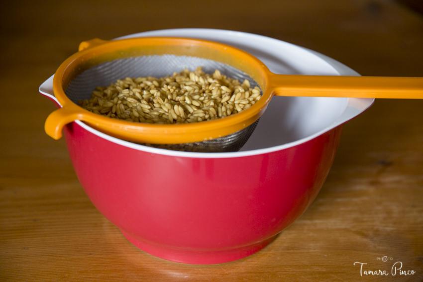 02- Cereal en colador a germinar
